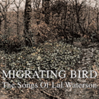 migrating bird - songs of lal waterson
