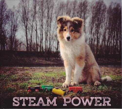 steam power cd-hoes